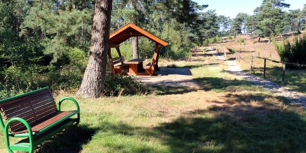 Rast- und Ruhemöglichkeit am Wacholderhain und Hügelgräberfeld Plaggenschale