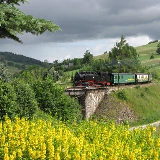 Fichtelbergbahn im Sehmatal