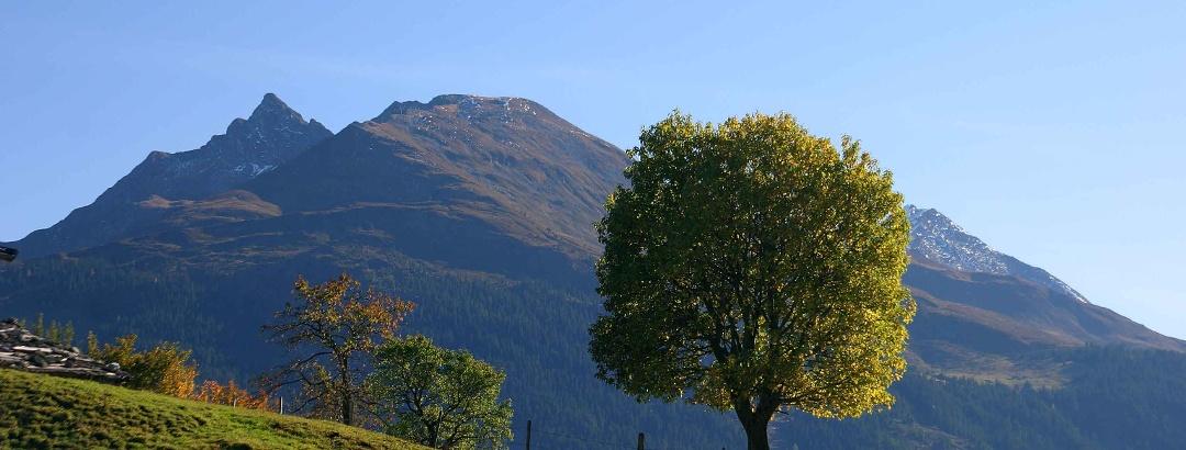 Blick auf den Pihapper (ganz links im Bild) - Markantes Zeichen des Pihappers sind seine zwei kleinen Berggipfel rechts und links.