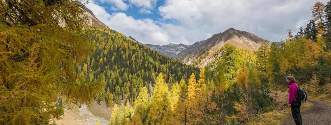 Herbstliche Aussicht vom Höhenweg in der Val Trupchun Richtung Piz Fier
