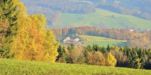Blick auf den Zustieg zum Hegerberg