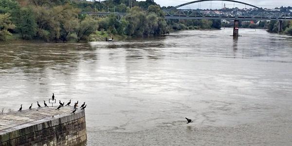 Schleifenroute | Passau Blick vom Wasserkraftwerk zur Stadt