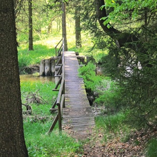Höllgrabenweg (Steg über den Reißbach)
