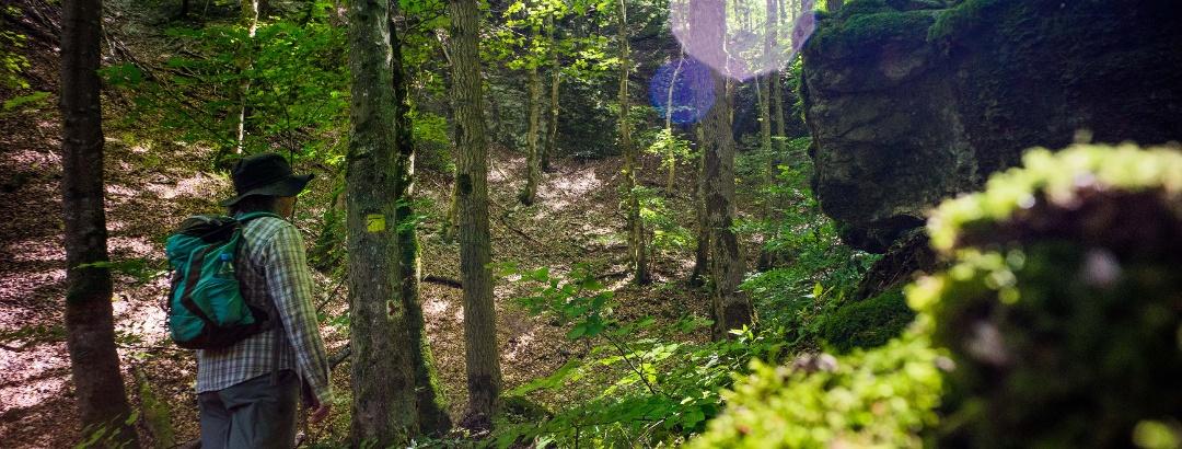 Durchs Felsental verläuft auch der europäische Qualitätswanderweg Albtraufgänger