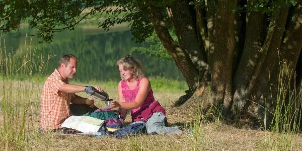 Picknick am Husener Stausee
