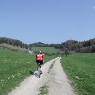 MTB Waldviertel