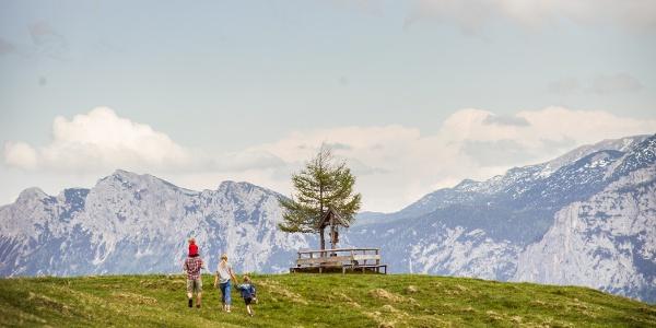 Schwarzeck Gipfel Salzburger Saalachtal
