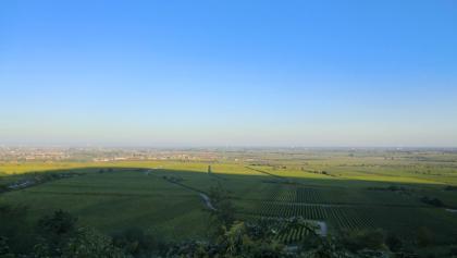 Diese Aussicht genießen wir beim Pfalzblick.