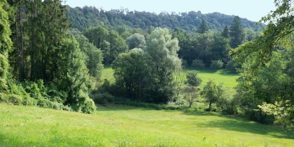 Naturschutzgebiet Nacker Mühle
