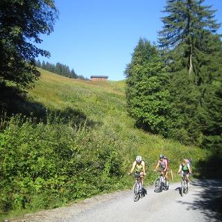 Au-Schoppernau   Auf dem Weg zur Bergkristall-Hütte