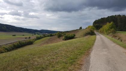 Anhöhe nördlich von Dagenbach