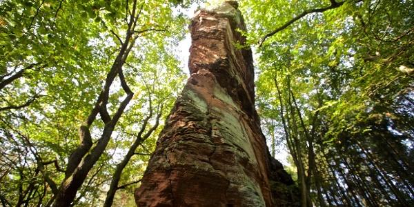 Die Fladensteine bei Bundenthal; Nähe MTB Cross Countrs Rennstrecke