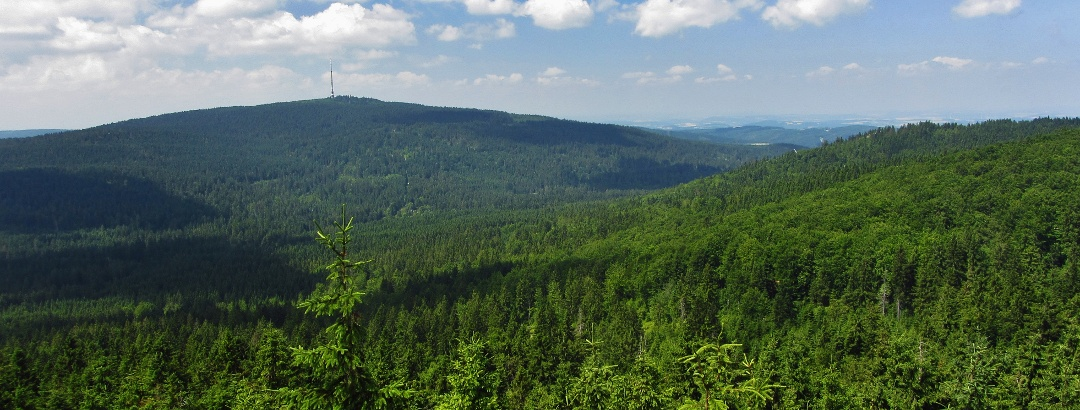Panoramablick vom Nußhardt (972 m) zum Ochsenkopf (1024 m)