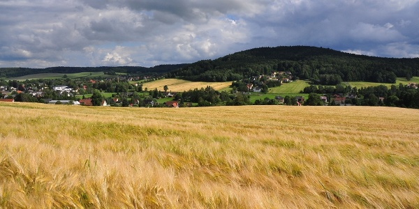 Blick zum Taubenberg