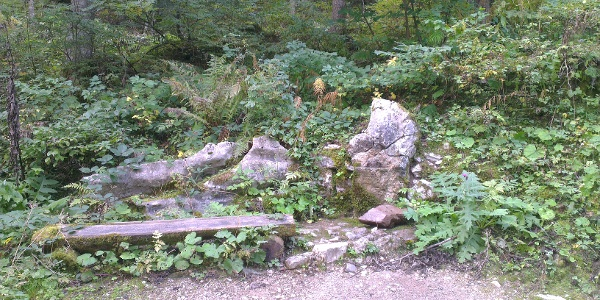 Brunnen auf dem Forstweg Andalo-Pian Dosson