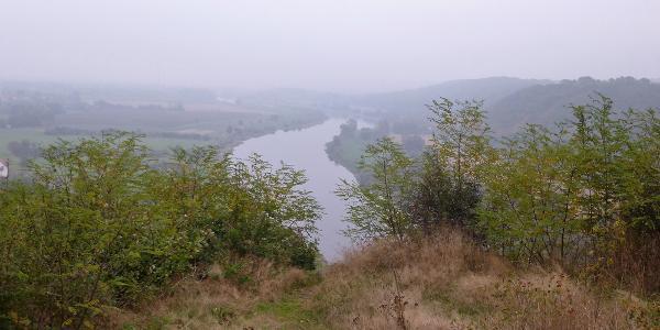 Blick von der Boselspitze auf die Elbe