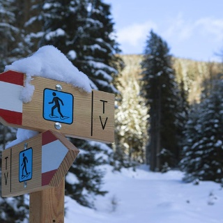 Snowshoe Hiking in Ultental Valley