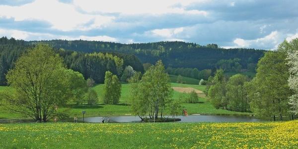 Naturbadeteich bei der Holzmühle