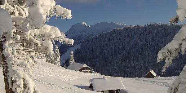 Winterwunderland am Niederalpl