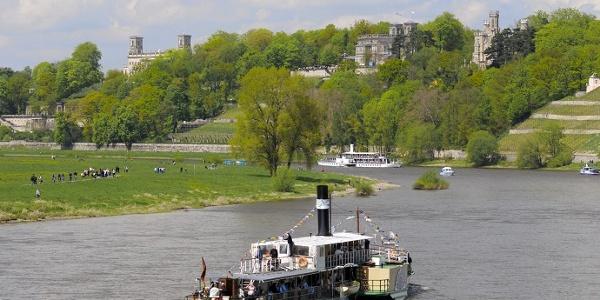 Elbschlösser Dresden mit Sächsischer Dampfschiffahrt