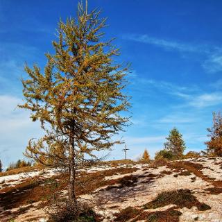 Gipfel Matschacher Gupf im Herbst