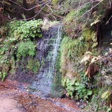Sankenbach Wasserfall