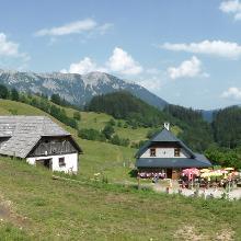 Panorama von der Falkensteinalm