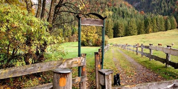 """Links die """"Pforte"""" zum Steig am Golfplatzrand - Beginn des Gernweges"""