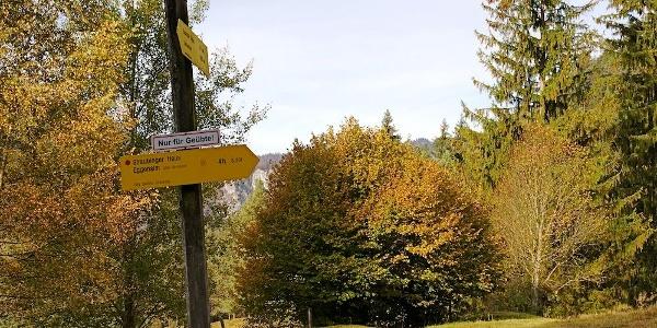 Abzweigung rechts bergauf zum Gernsattel