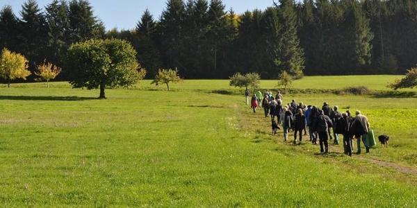 Wandern auf dem Pfad der Vielfalt in Fischbachtal