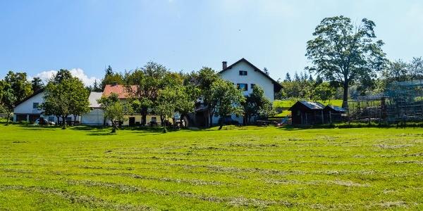 Tourist Farm Abram