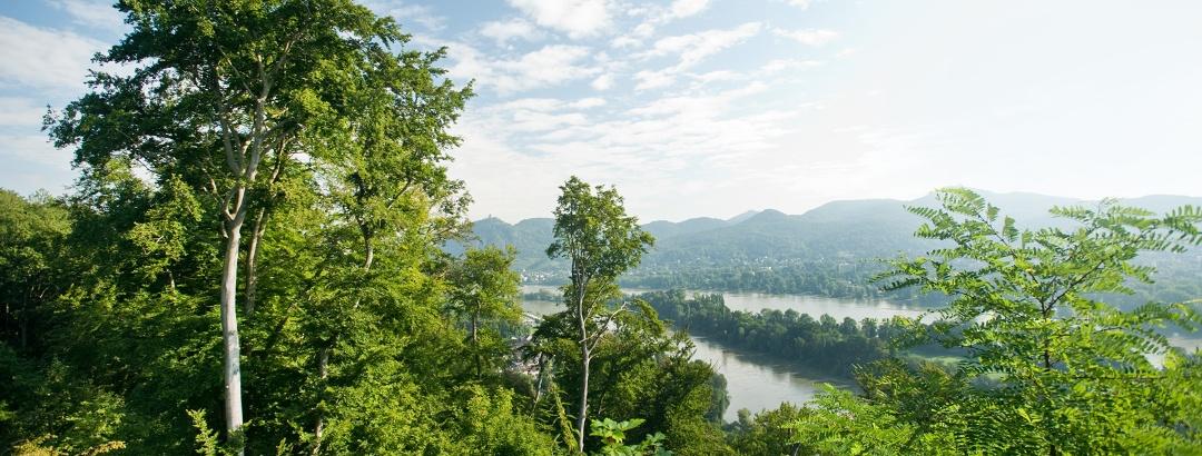 Blick aufs Siebengebirge