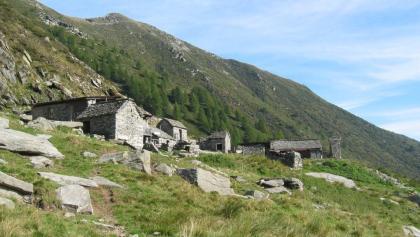 Cabane Alpe Nimi
