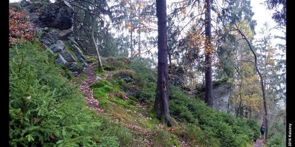 Wanderweg zwischen Monschau und Perlenbachtalsperre
