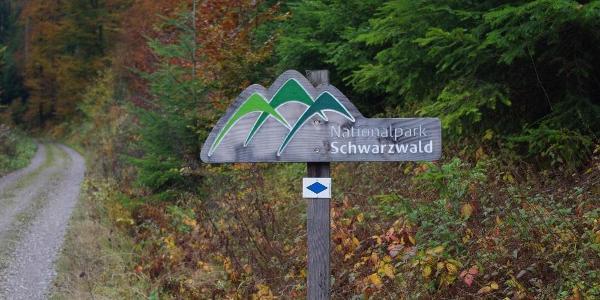 Nach einigen Kilometern betritt man das Gelände des Nationalparks Schwarzwald.