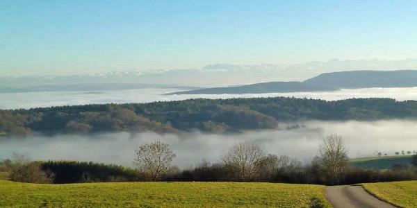 Blick vom Hochrhein-Höhenweg über Nebel auf die Alpen