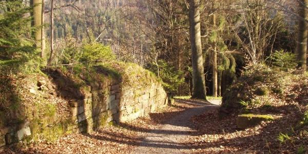 Ruine Waldenburg Eingangsbereich