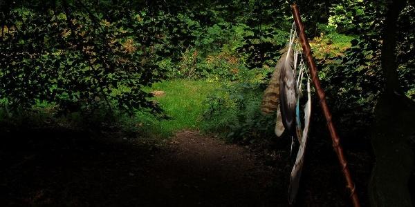 """Der """"Eingang"""" unter das Blätterdach"""