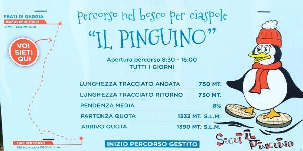 Il Pinguino - technical detalis