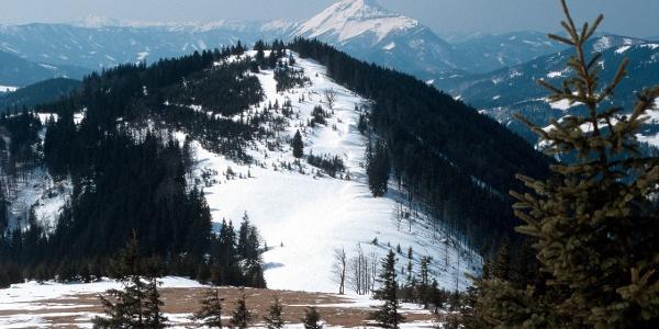 Blick vom Tirolerkogel nach Westen zum Ötscher