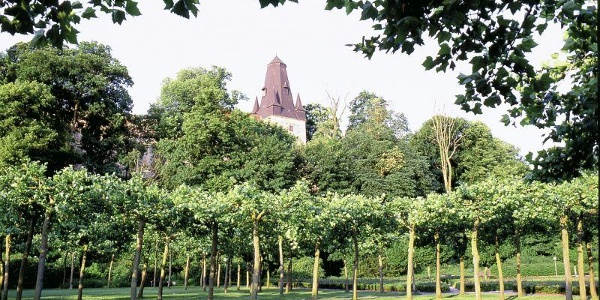 Schlosspark in Bad Bentheim am Fuße der Burg