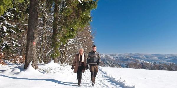 Winterwanderung im Schmallenberger Sauerland