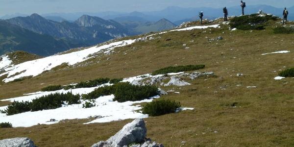 Auf dem Dreimarkstein, Blick zur Schneealpe