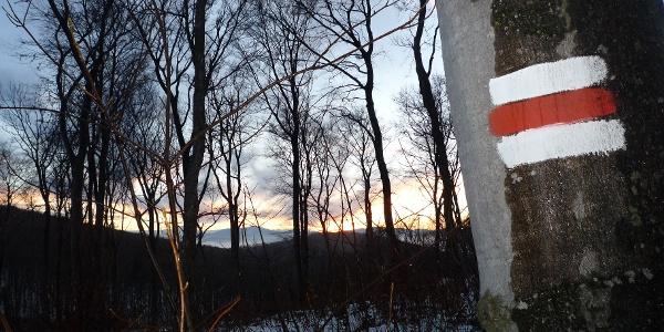 Durchblick zum Schneeberg