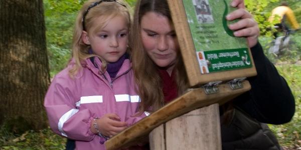 Erlebnisstation vom Walderlebnispfad