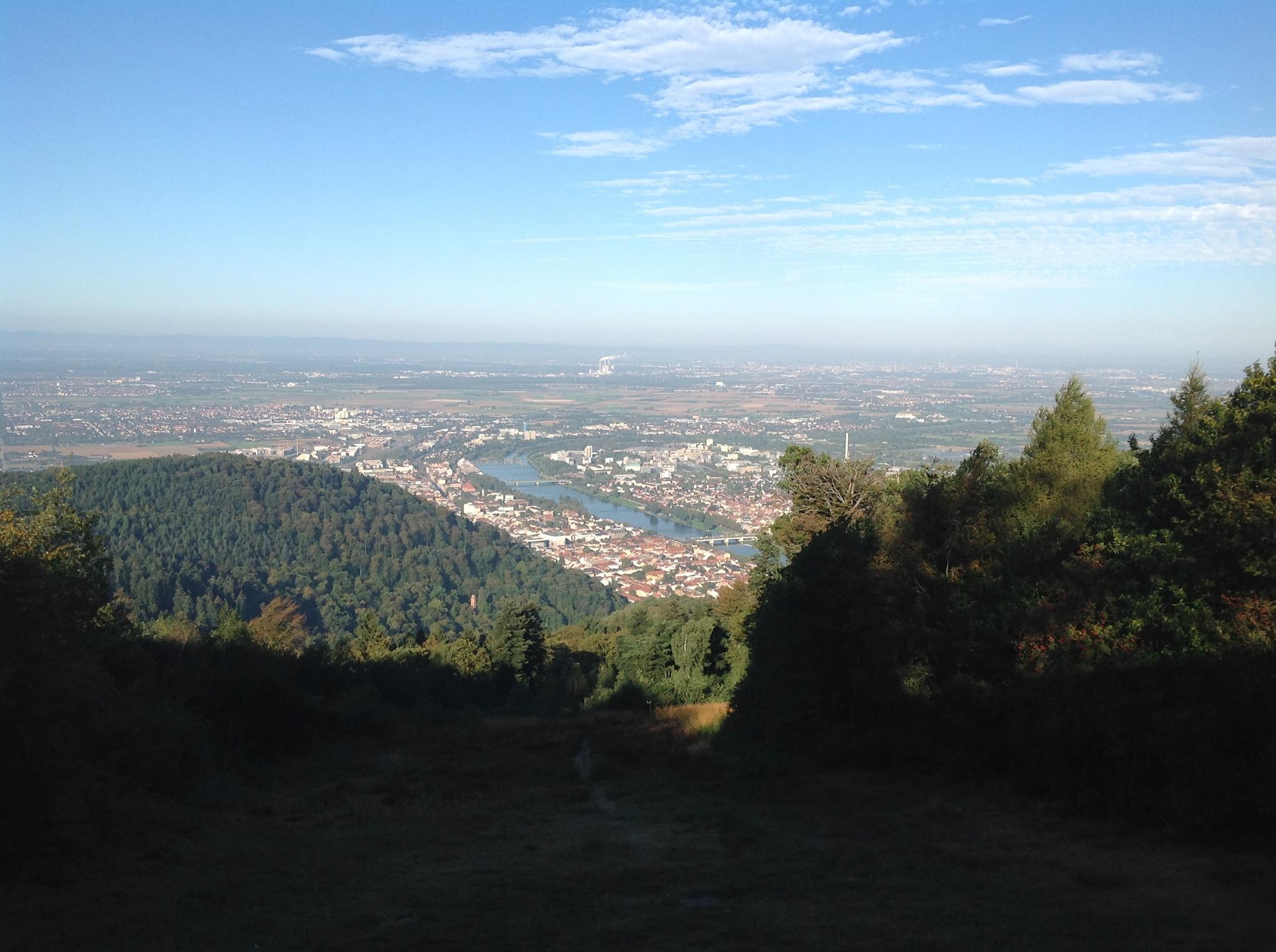 Neckarsteig Heidelberg Bis Neckargemund Fernwanderweg Outdooractive Com