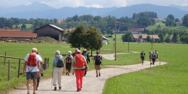 Es geht immer Richtung Alpen