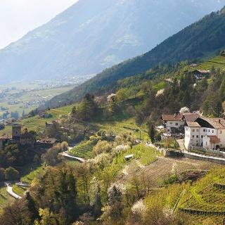 Sentiero Burgweg - Sentiero Ochsentod - Castel Tirolo