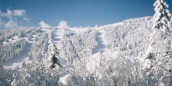 Blick auf's Gaberl im Winter