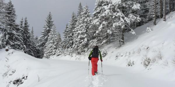 Höhenwanderung Am Gabler